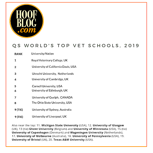 veterinary colleges international rank 2019