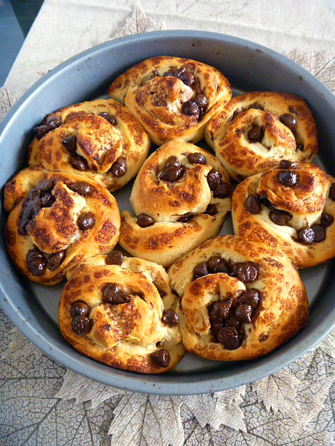Quick and Easy Chocolate Chip Cinnamon Rolls: Heavenly chocolately breakfast pastries! - Slice of Southern