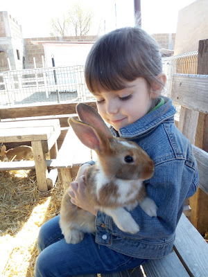 Farm rabbit preschooler cuddly