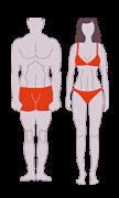 Mesomorph body | www.thefittestblogger.com