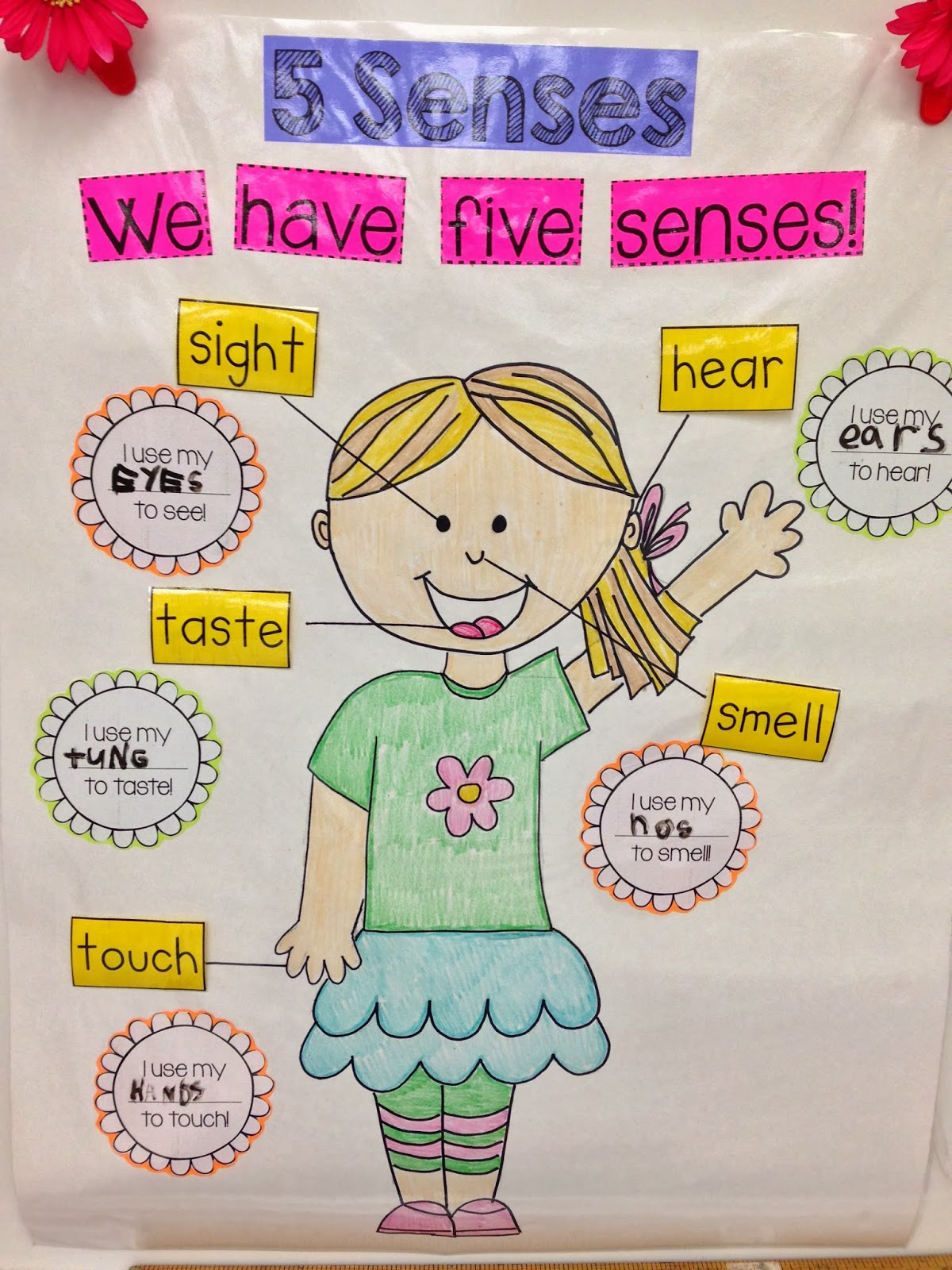 Kindergarten Smiles Five Senses
