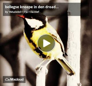 https://www.mixcloud.com/straatsalaat/bellegse-knoepe-in-den-droad/