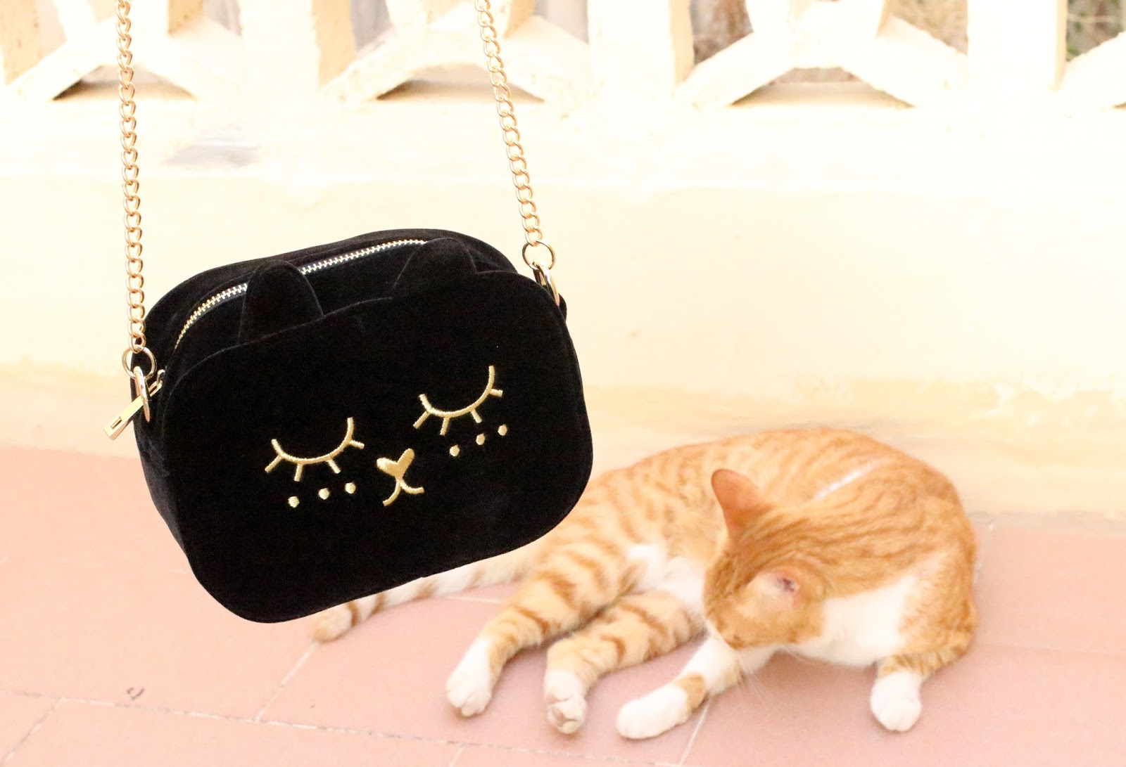 ASOS VELVET CAT BAG
