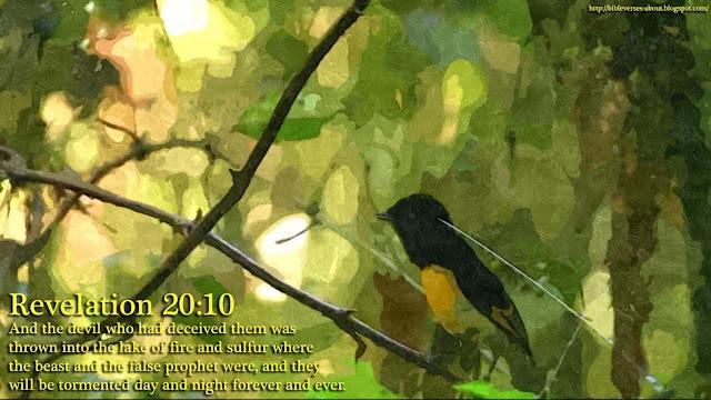 Revelation of John 20:10