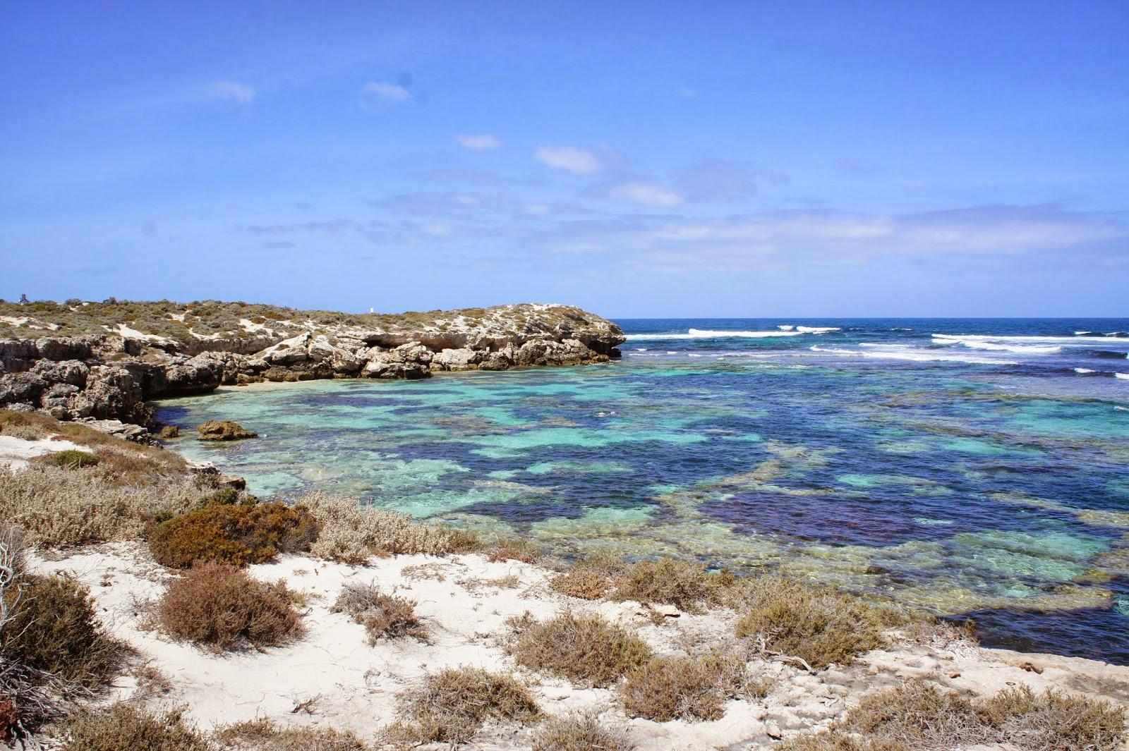 Rottnest Island Australia: Around The World With Rebecca: Rottnest Island, WA, Australia