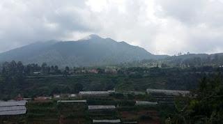 Pemandangan dari villa the flojo