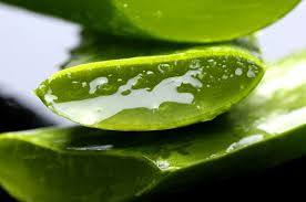 easily aloe vera facial at home in urdu