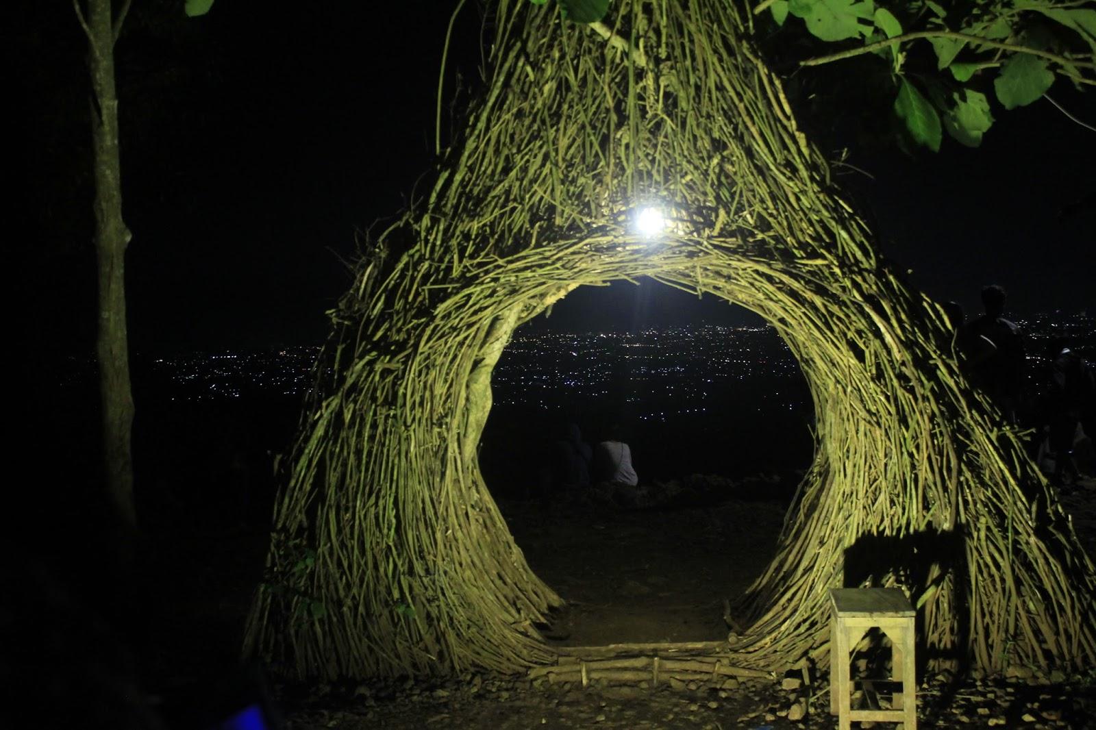 wisata jogja pinus pengger Hutan Pinus Pengger Yang Hits Di Malam Hari