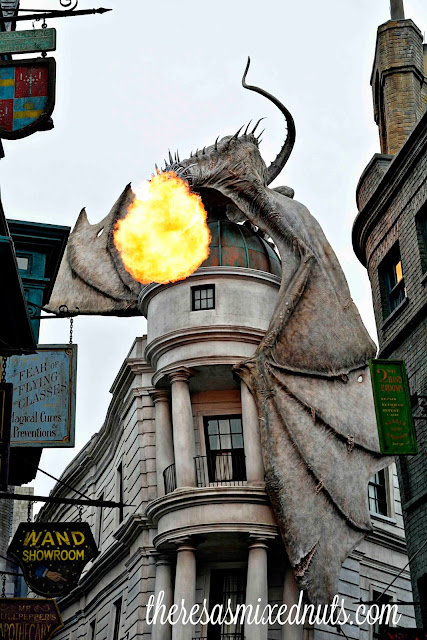 Harry Potter Dragon