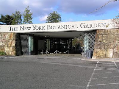 Visiter Jardin botanique de New York