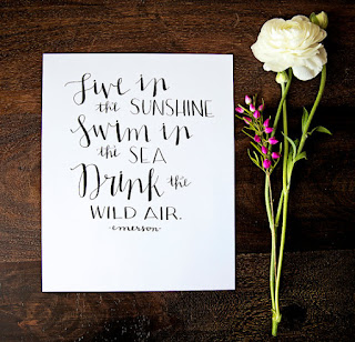 swim in the sunshine quote print