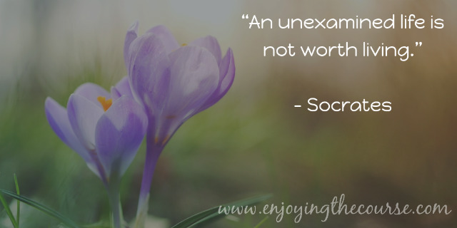 An unexamined life is not worth living. ~Socrates | www.enjoyingthecourse.com