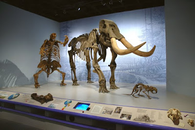 Giant Sloth and mammoth