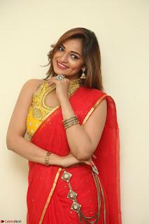 Actress Ashwini in Golden choli Red saree Spicy Pics ~  060.JPG