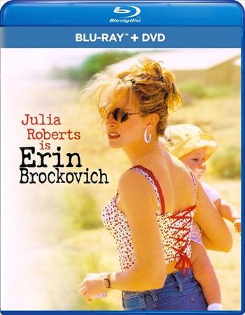Erin Brockovich 2000 Dual Audio Bluray Download