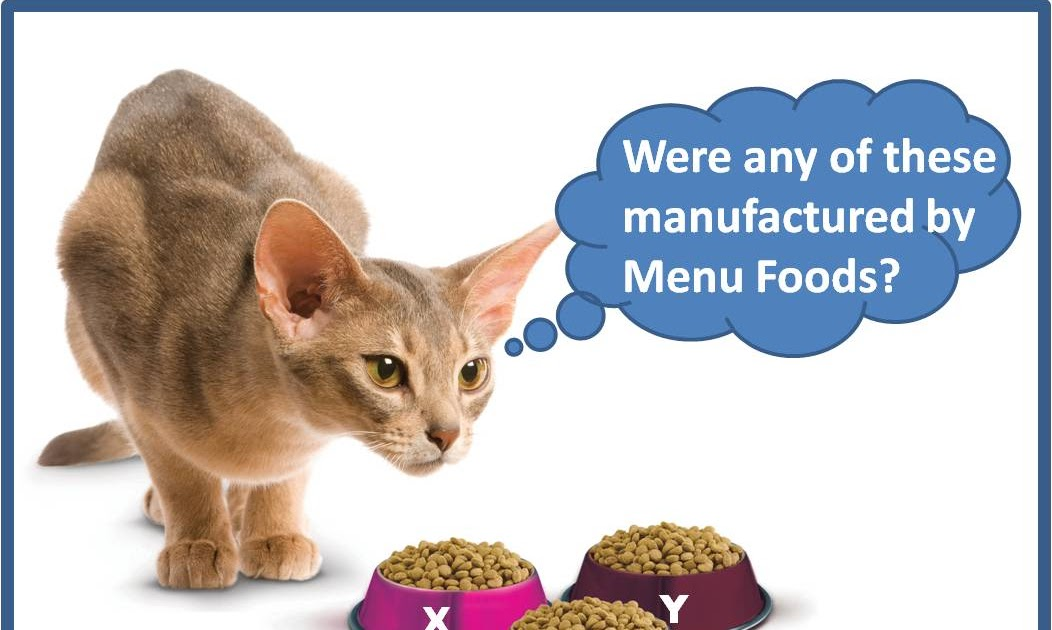 Is Wheat Needed In Cat Food