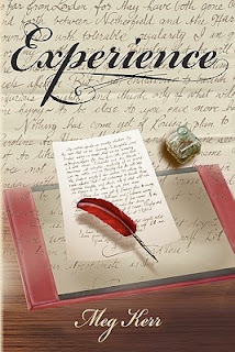 Book Cover: Experience by Meg Kerr