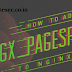 How to build nginx with Pagespeed module
