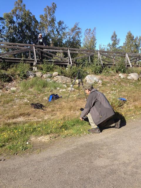 Kuvattava seisoo puisella kävelysillalla, kuvaaja on sijoittunut hieman alemmas saadakseen sopivan kulman.
