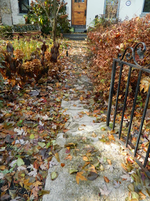 Toronto Cabbagetown Fall Front Yard Garden Cleanup by Paul Jung Gardening Services before