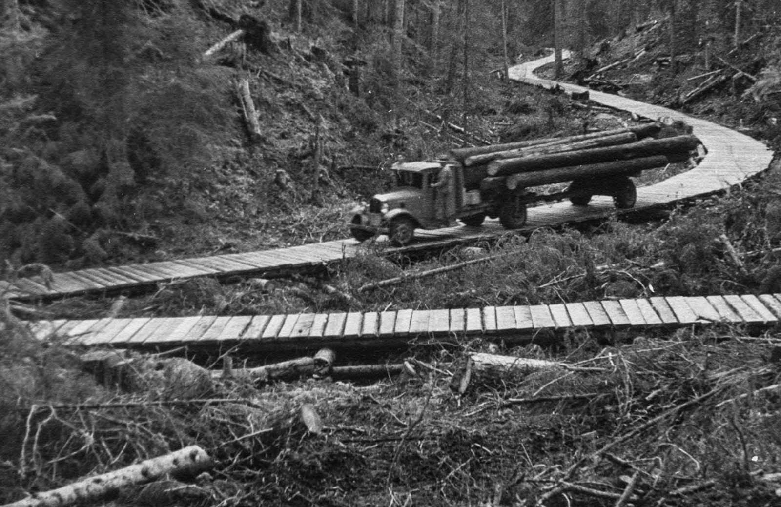 Transporting timber, 1936.