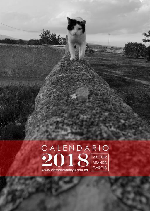 fotografia,portada,calendario,2018,animales,gato