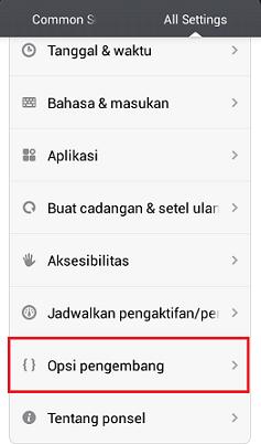 Opsi Pengembangan Pada Ponsel Android