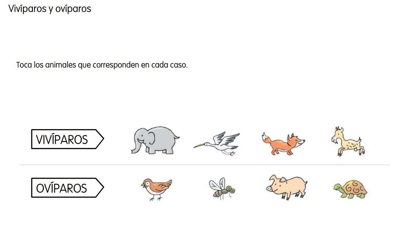 http://www.ceiploreto.es/sugerencias/cp.juan.de.la.cosa/Actividades%20PDI%20Cono/01/08/05/010805.swf