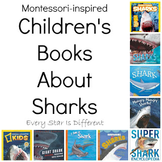 Children's Books About Sharks.