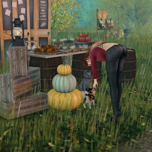 bens,beste outfit,evolove harvest