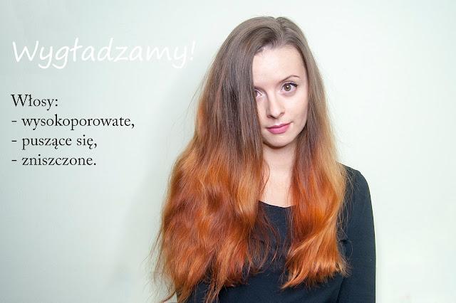 [386.] Sprawdzone kosmetyki i sposoby na włosy wysokoporowate, puszące się, matowe i zniszczone