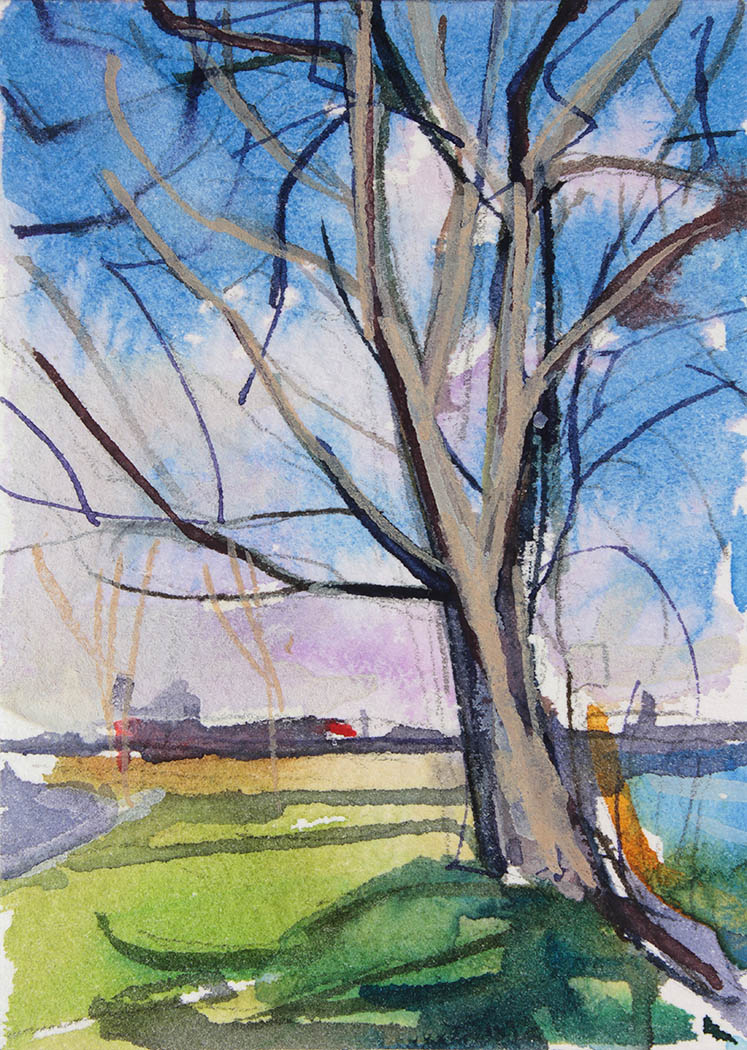 A watercolor painting of a tree at Island Park Williamsville NY