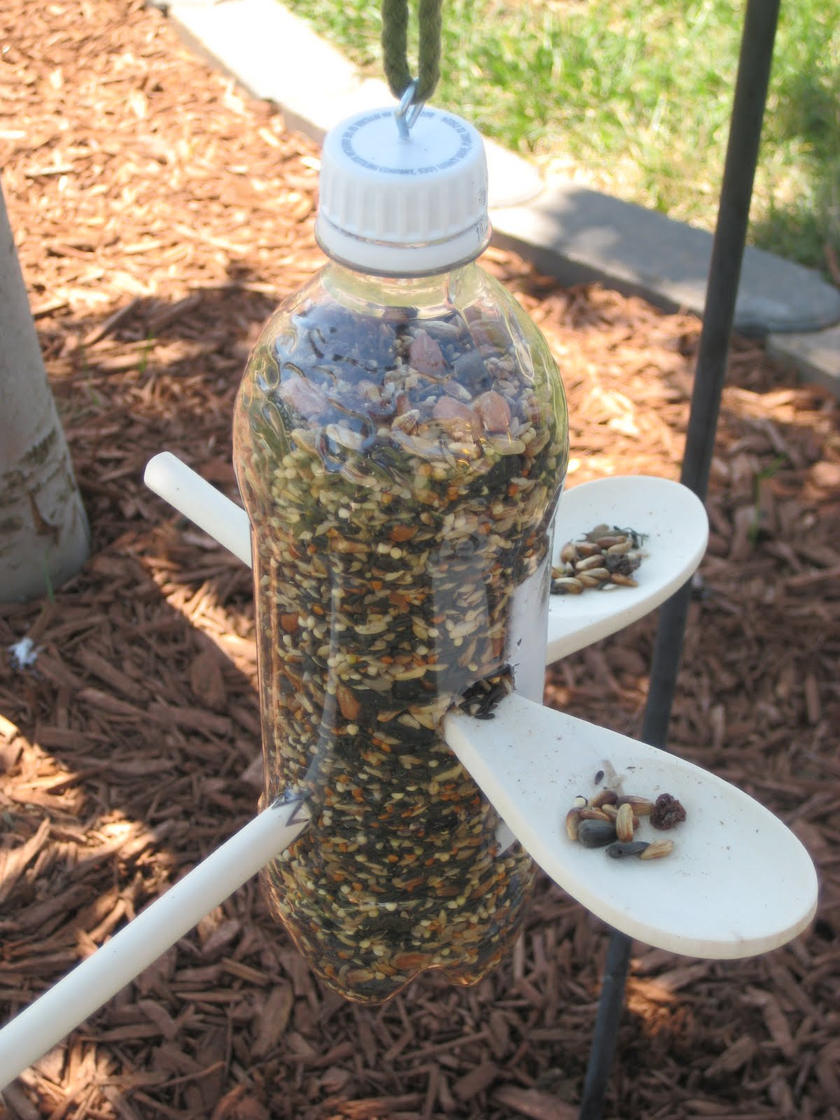 Relentlessly Fun Deceptively Educational Bird Feeder And