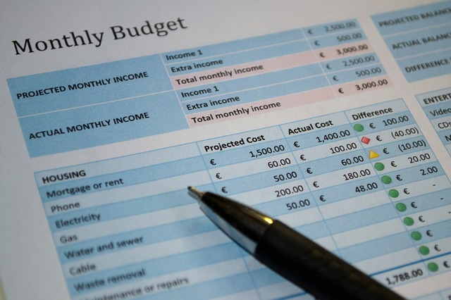budgeting, monthly income