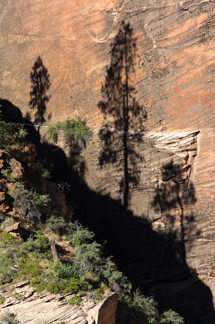 Angel's Landing, Zion National Park