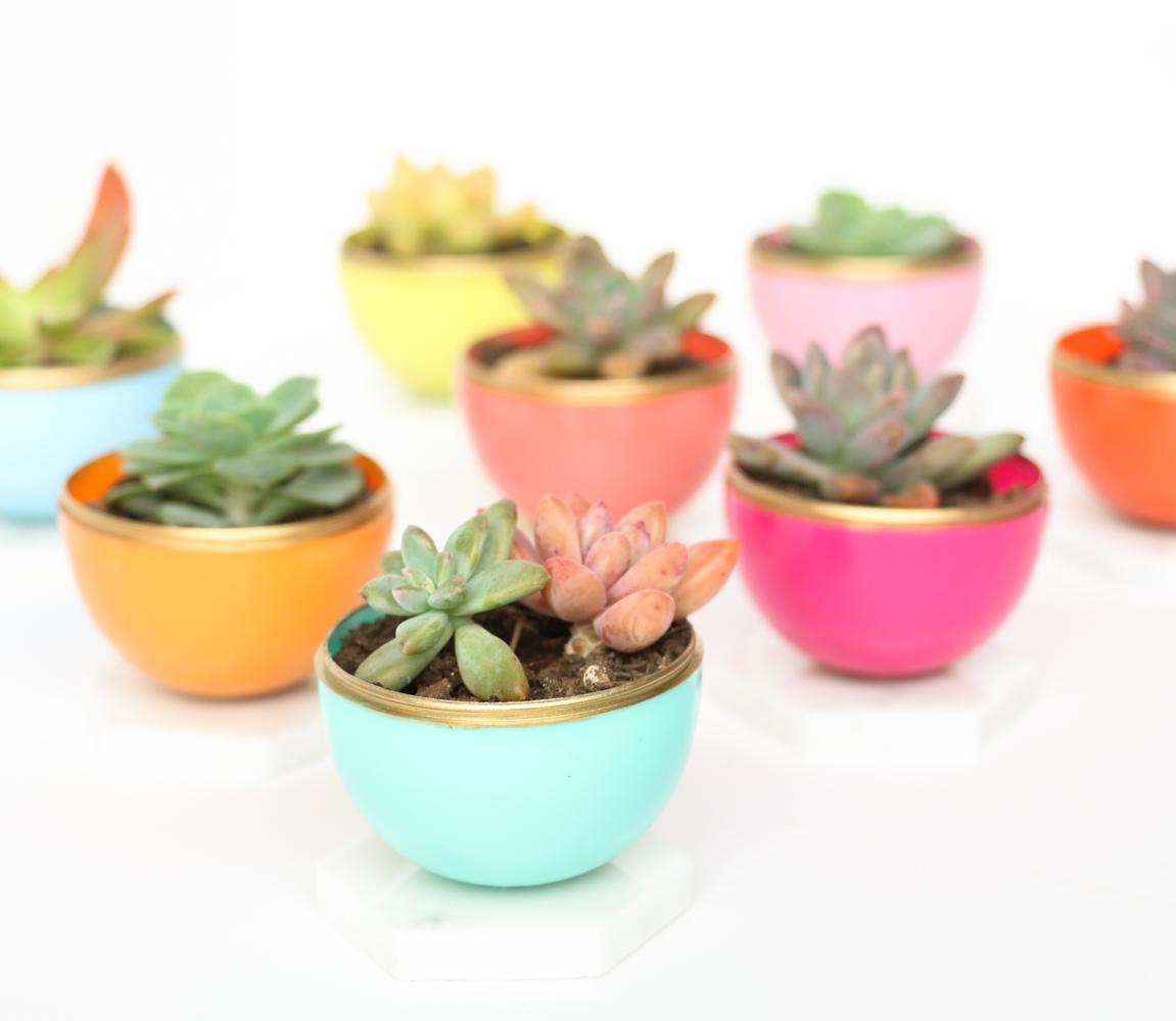 Craft it diy mini spring succulent planters a kailo Planters for succulents