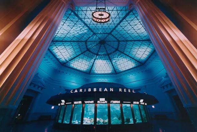 História e estrutura do Shedd Aquarium