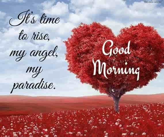 good morning msg with heart tree