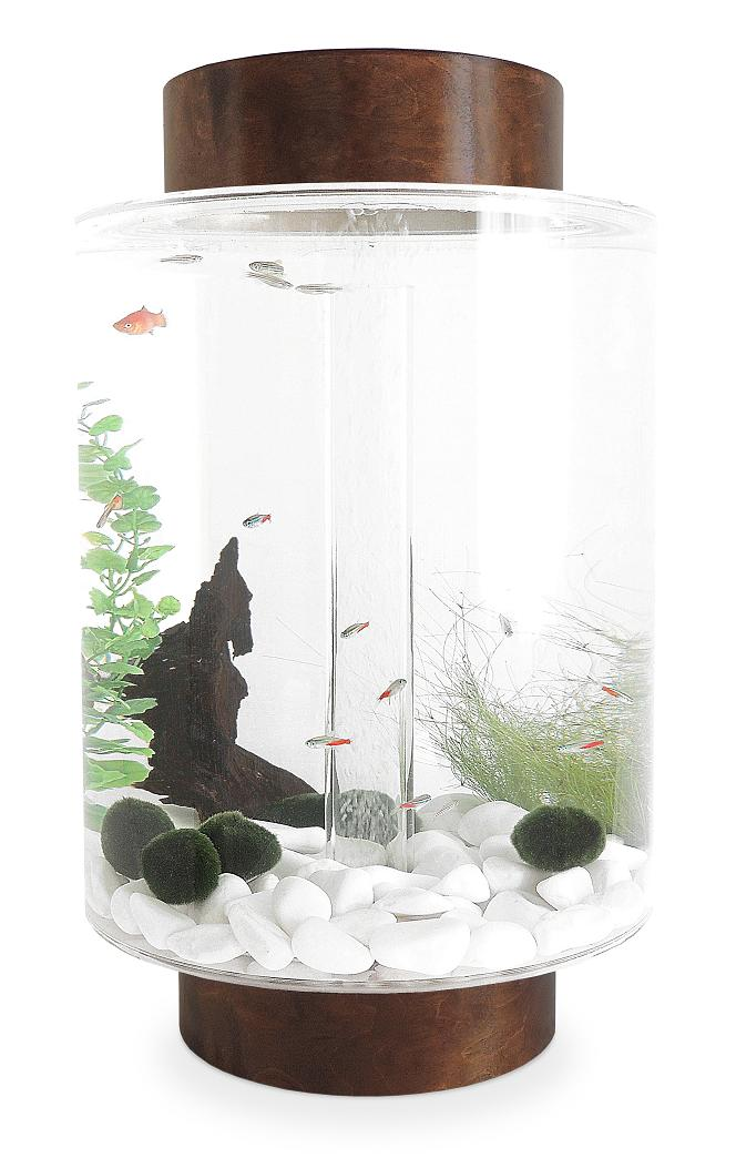 15 coolest aquariums for you for Avo fish tank