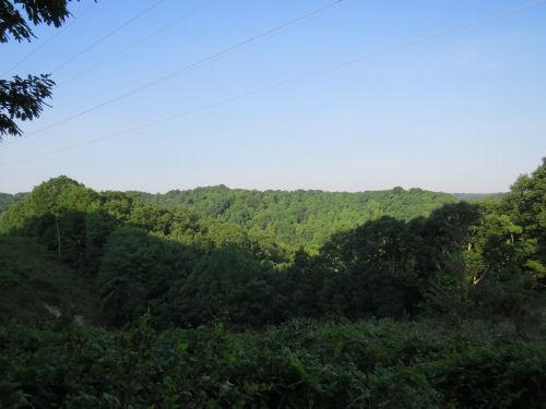 Knobstone Trail vista