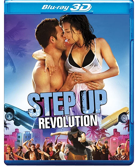Step Up Revolution 2012 Dual Audio Hindi 480p BluRay 300mb ESubs Download