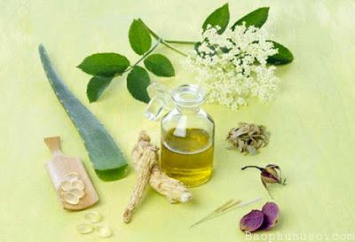 Bí quyết dưỡng da trắng mịn trong mùa hè với dầu olive