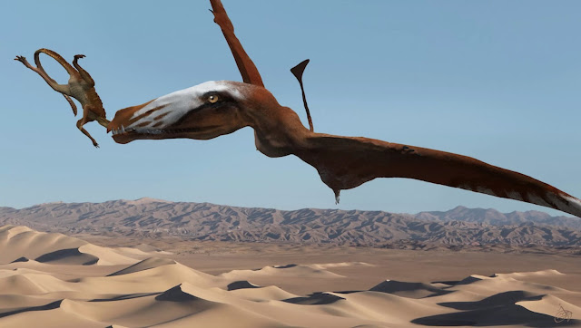 200-million year old Pterosaur 'built for flying'