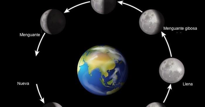 Visi n agroecol gica fases lunares m s adecuadas para for Fase lunar julio 2016
