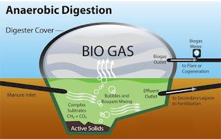 Apakah kau pernah mendengar kata Biogas Pengertian Biogas, Khasiat dan Cara Membuat Biogas