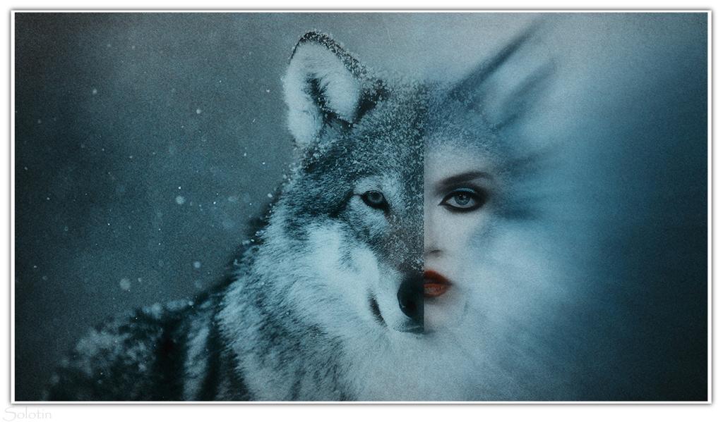 девушка волк фотосессия фотошоп