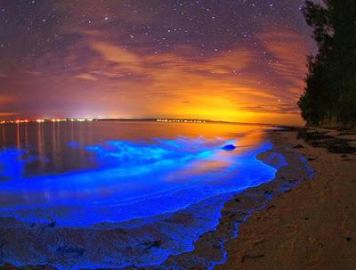 Playa bioluminiscente - Islas Maldivas