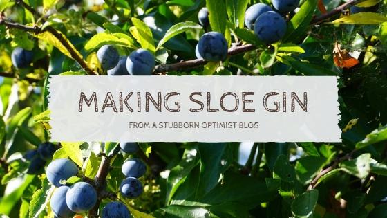 making sloe gin - www.astubbornoptimist.blogpsot.com