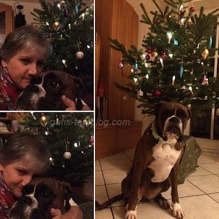 Schönes Weihnachtsfest 2016