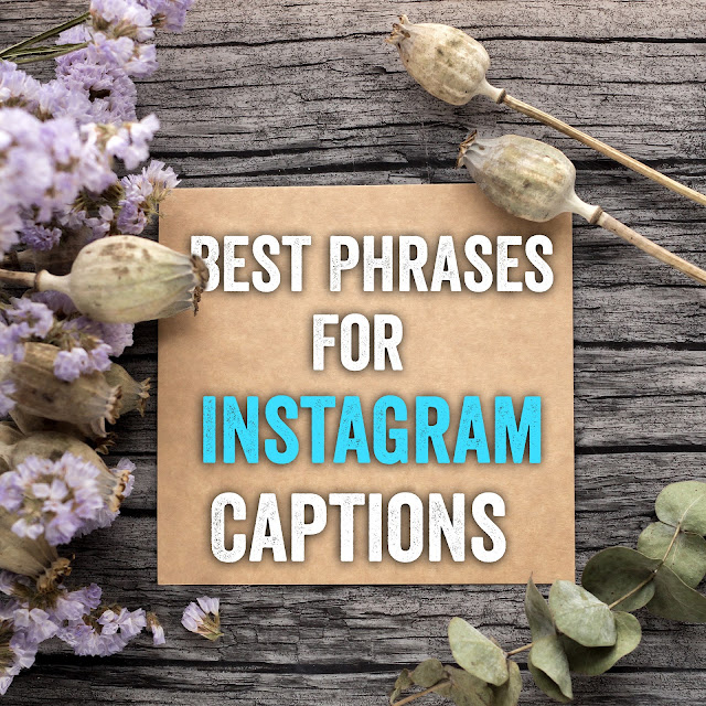 Best Phrases For Instagram Captions In 2019